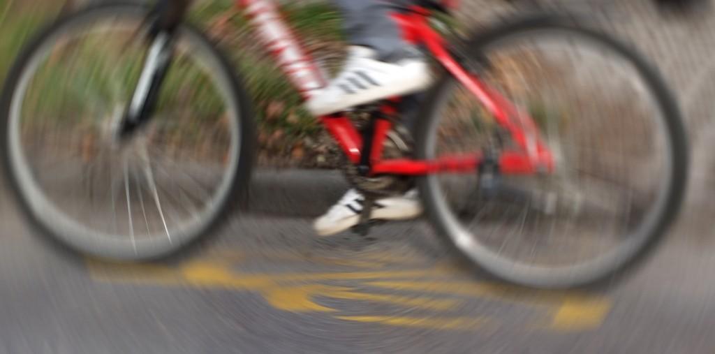 kerékpárút8