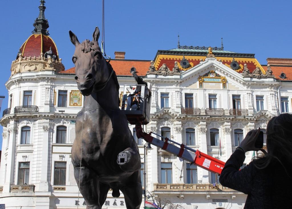 Sforza ló, kolosszus 018
