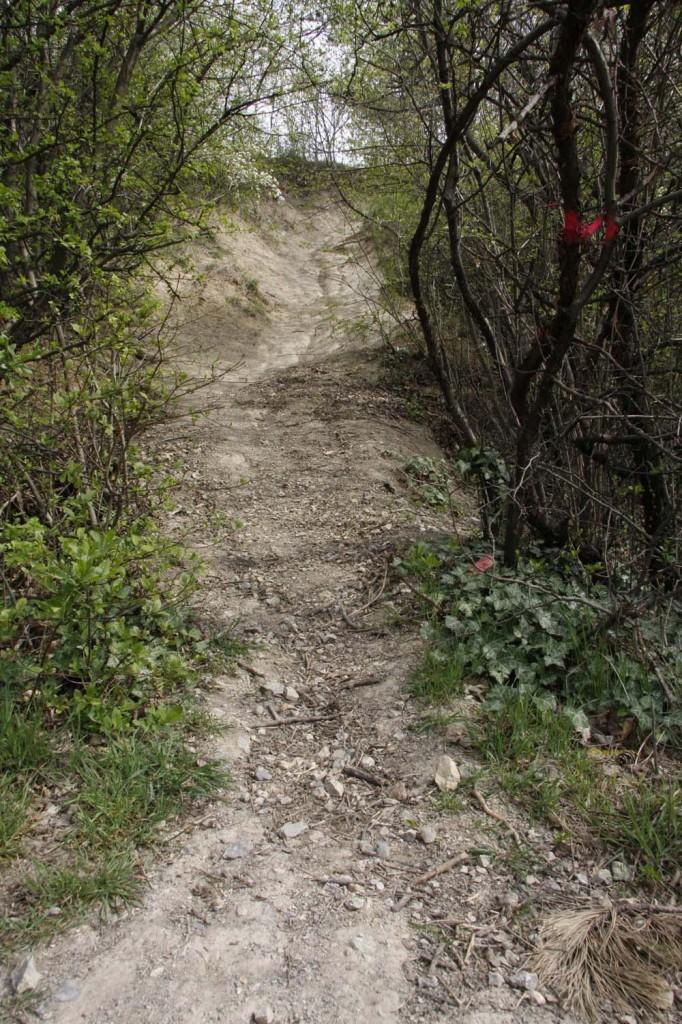 Terepbicikli, bringa, downhill (5)