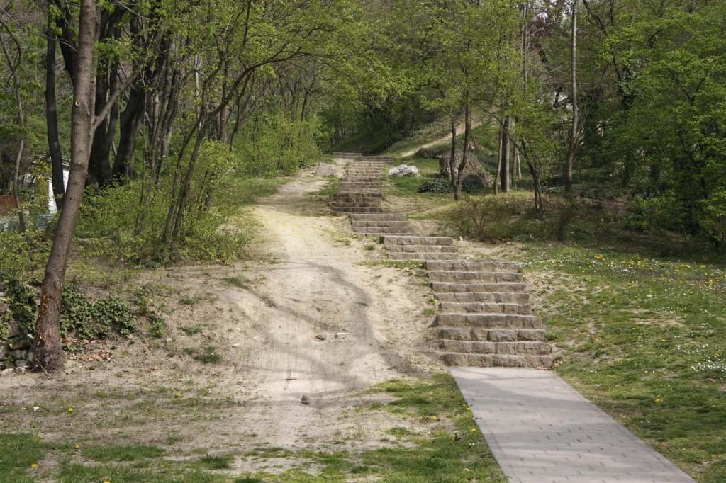 Terepbicikli, bringa, downhill (7)