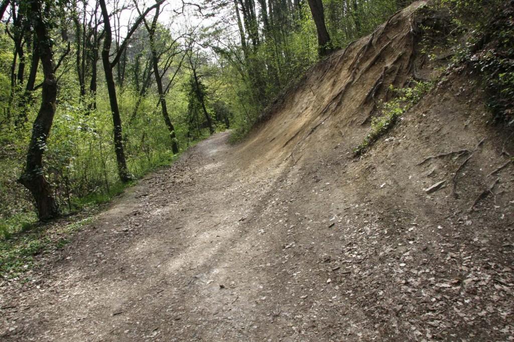 Terepbicikli, bringa, downhill (8)