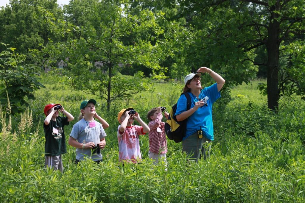 természet, kirándulás, erdő, gyerekek
