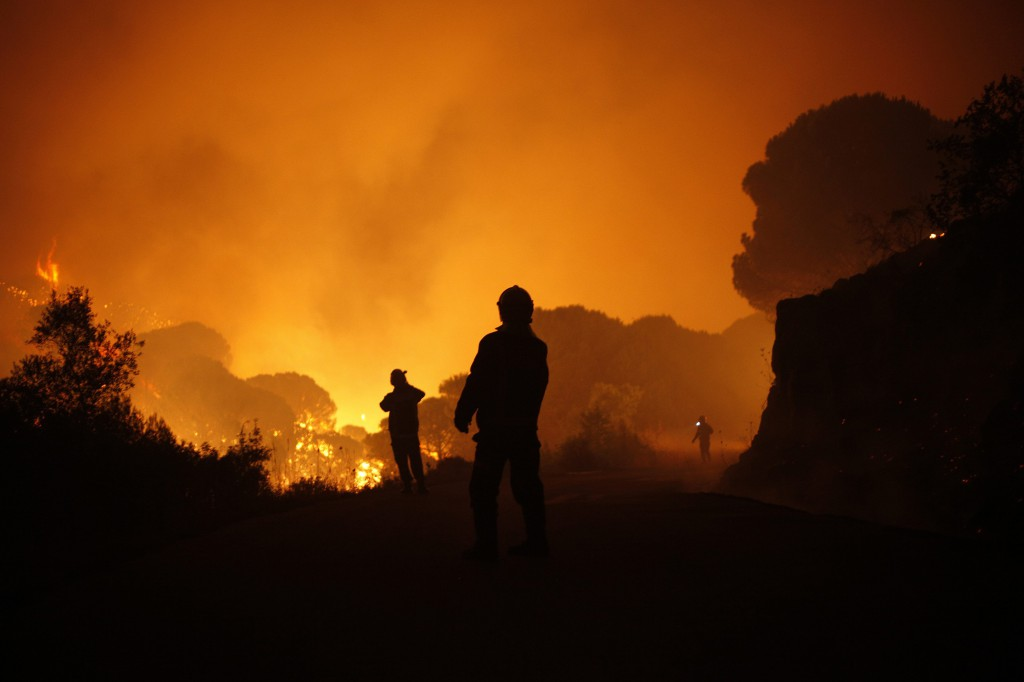 Firemen walk past a fire in a forest at Barranco Blanco (White Ravine) in Coin