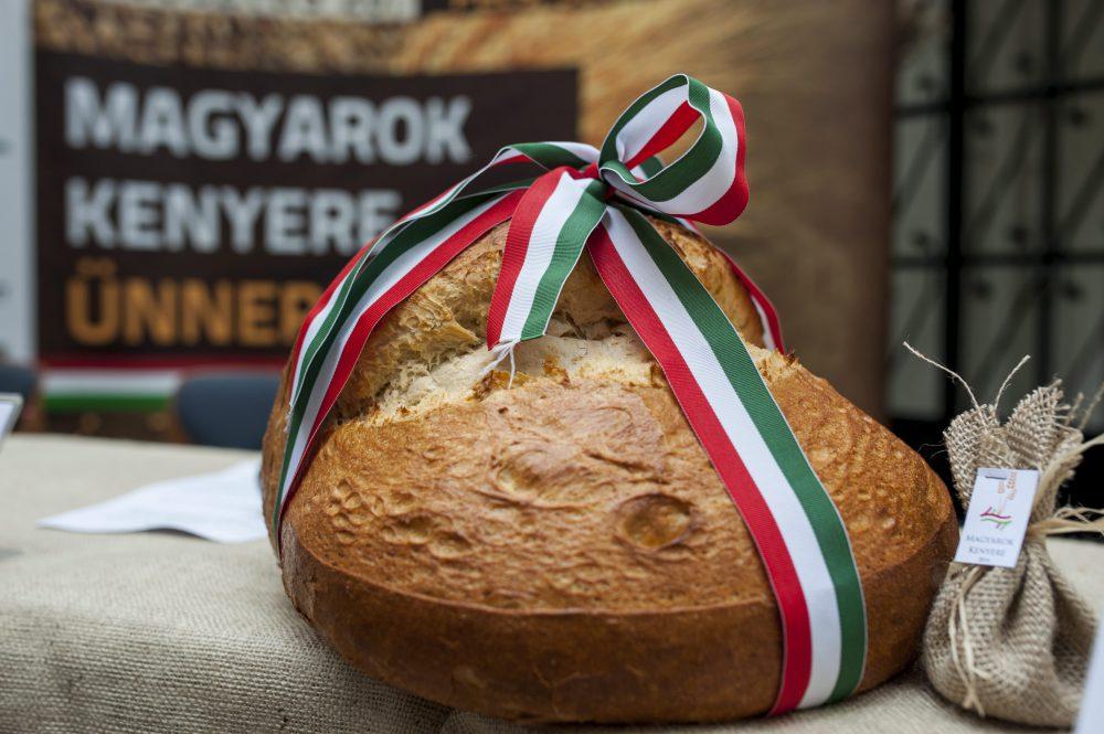 A Magyarok Kenyere program sajtótájékoztatója Pécsen