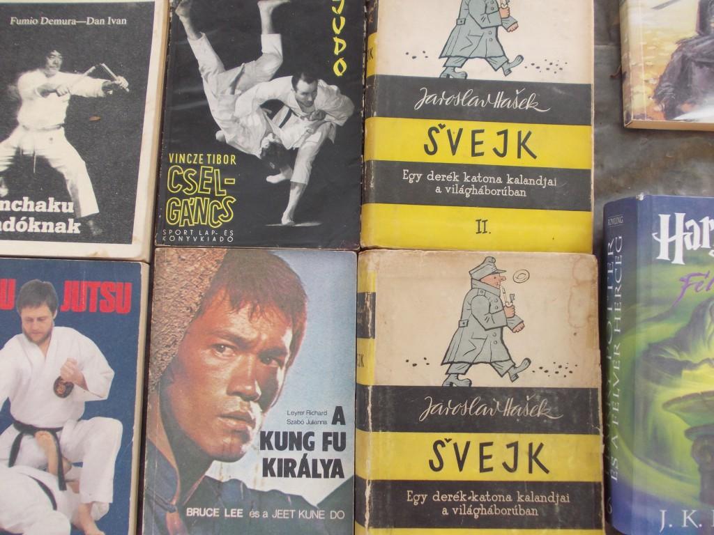 Bruce Lee és Svejk egy képen