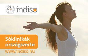 indiso_cikk_kep_2_300x190 (1)