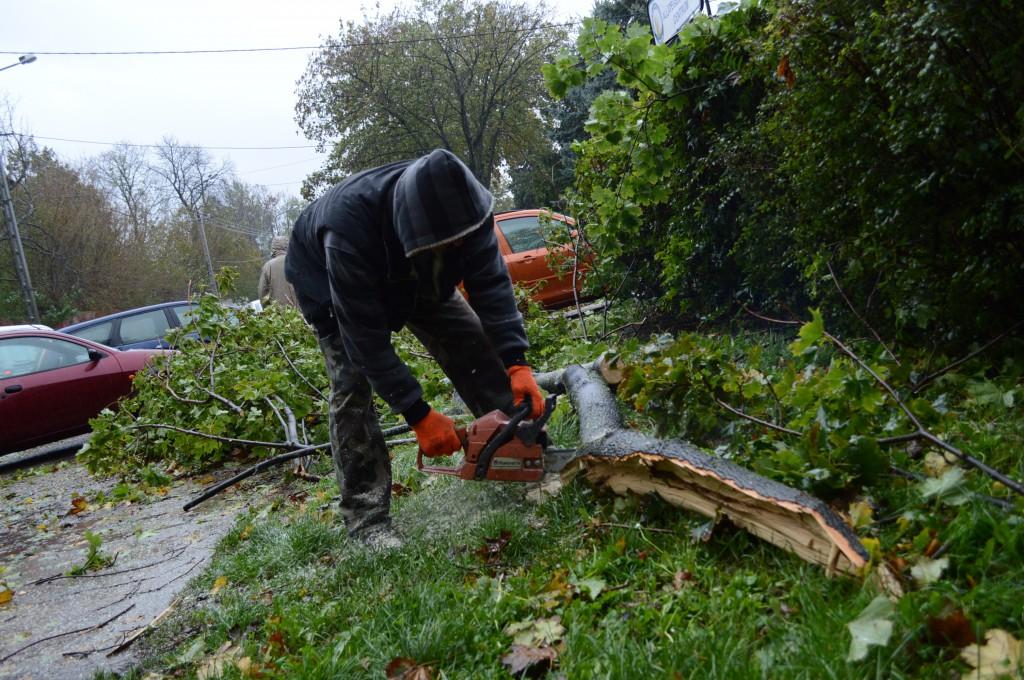 A Biokom munkásai helyszínről helyszínre vándorolva takarítják a romokat