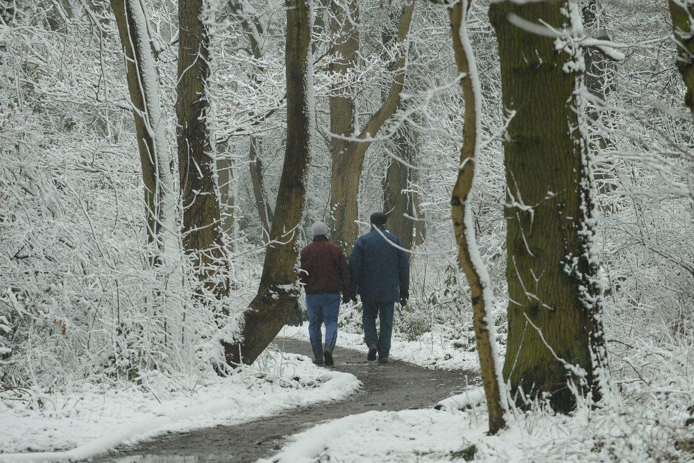 túra, kirándulás, tél, hideg, séta
