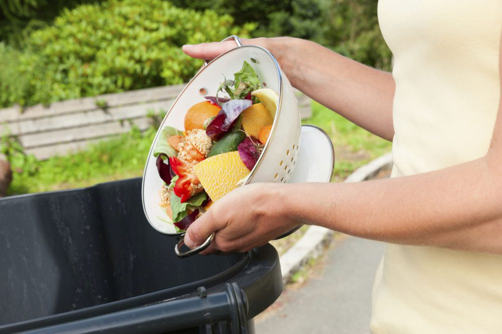 Fruit and vegtable waste