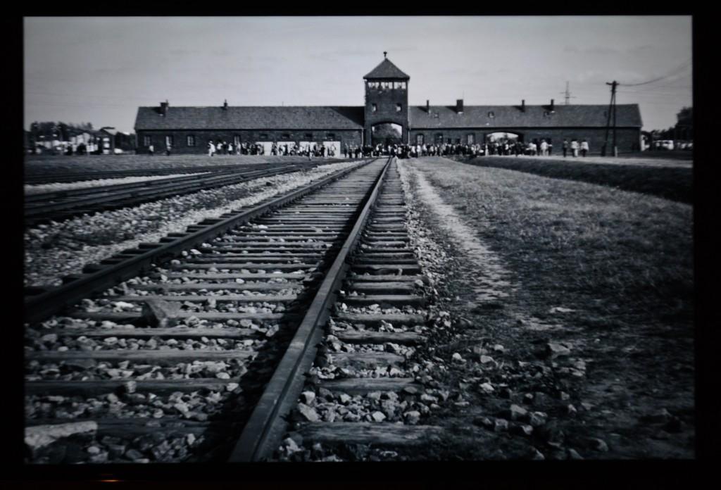 roma holocaust3