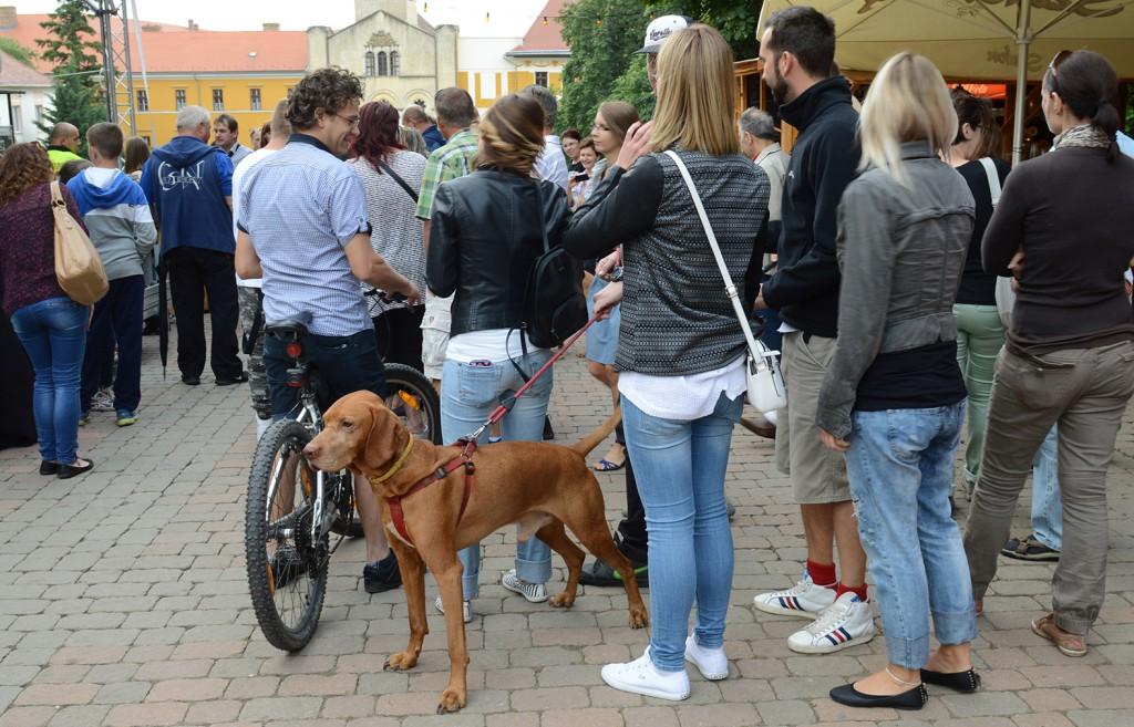 Sokan jöttek kutyával