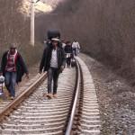 Két hét alatt 50 ezer migráns Zákányban