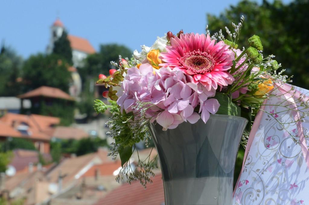 fogadj örökbe virágot2
