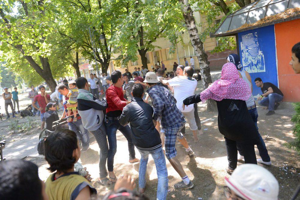 Illegális bevándorlás - Migránsok a magyar-szerb határnál, bevándorló, menekült