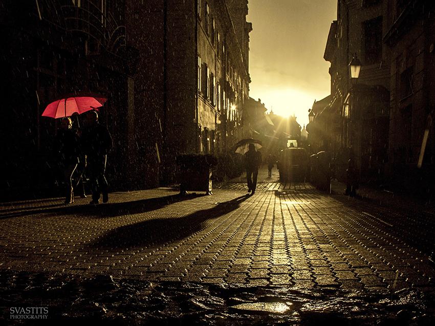 A piros esernyőpecsma Svastits Photography