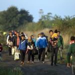 Megint jönnek a migránsok