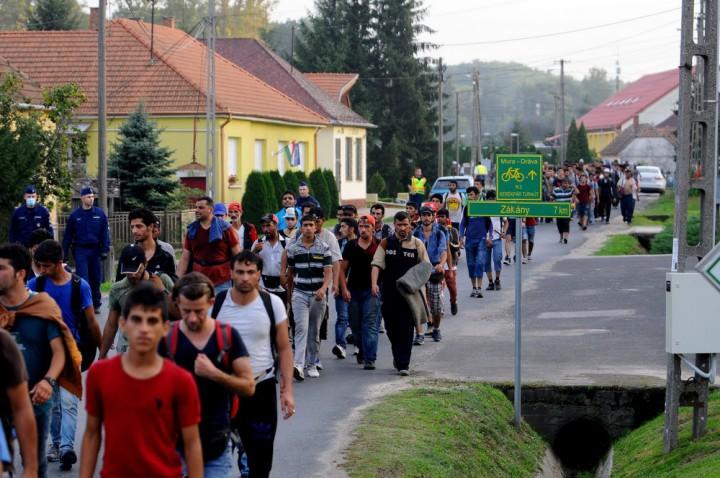Surd, 2015. szeptember 18. A horvát-magyar határt Gyékényesnél átlépõ illegális bevándorlók gyalogolnak a Zala megyei Surdon Nagykanizsa felé 2015. szeptember 18-án. Számukat 500-600-ra becsülték. MTI Fotó: Gergely Szilárd