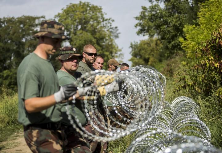 Sárok, 2015. szeptember 18. Katonák szögesdrótot helyeznek el a magyar-horvát határ magyarországi oldalán, Sárok határában 2015. szeptember 18-án. Orbán Viktor miniszterelnök ezen a napon reggel a Kossuth Rádió 180 perc címû mûsorában elmondta, hogy péntekre virradó éjszaka megkezdõdött az ideiglenes mûszaki határzár építése a magyar-horvát határon, a kerítést 41 kilométeren építik ki, és az elsõ védvonal még a nap folyamán el is készül. MTI Fotó: Mohai Balázs