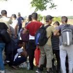Áttörték a határt a migránsok Mohácstól nem messze