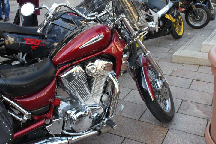motor (14)