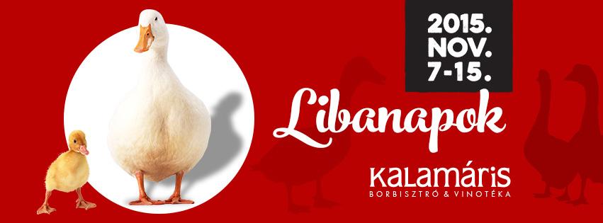 libanap_face