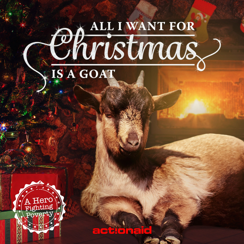 ActionAid_GoatsSingingChristmasCarols15