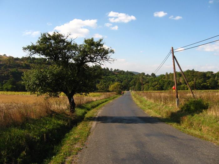 országút