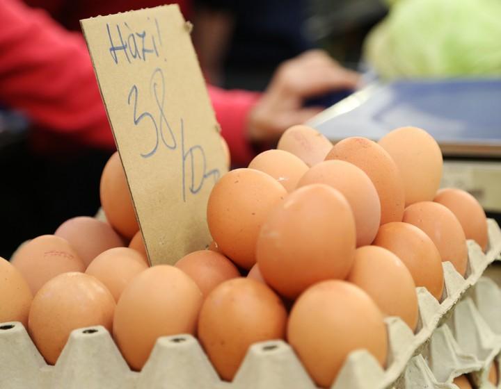 vásárcsarnok, húsvét, tojás, hl07