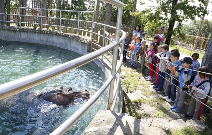 állatkert, hl07
