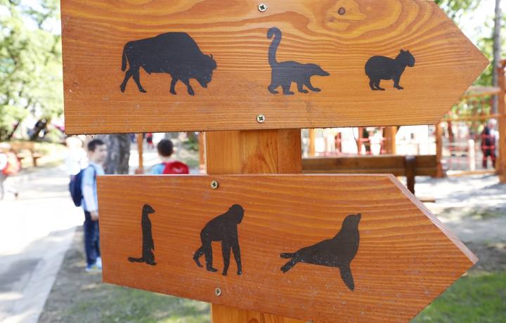 állatkert, hl11