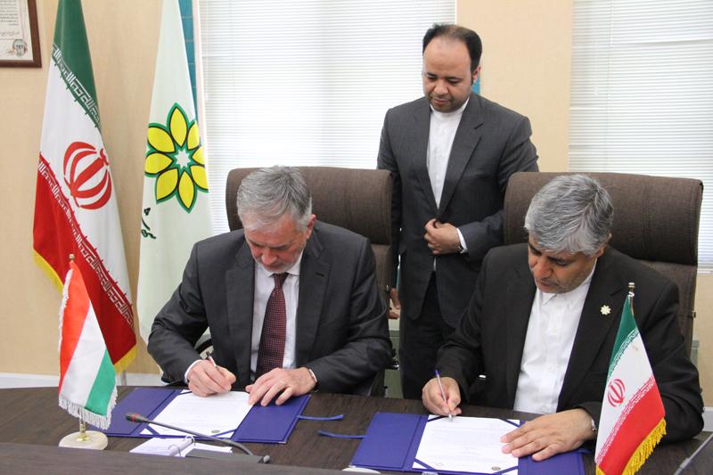 irán shiraz (4)