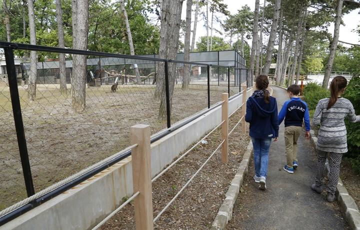 zoo, hl12