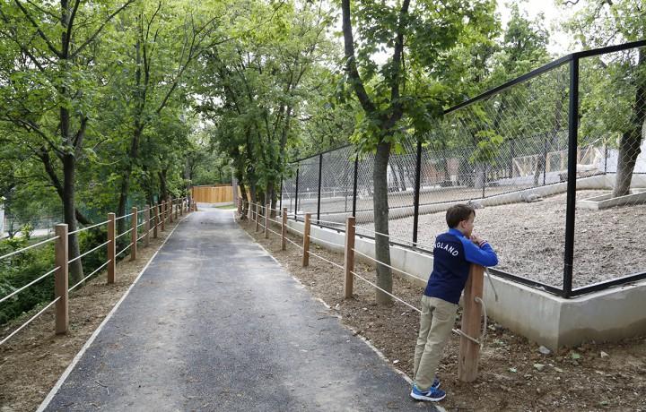 zoo, hl16