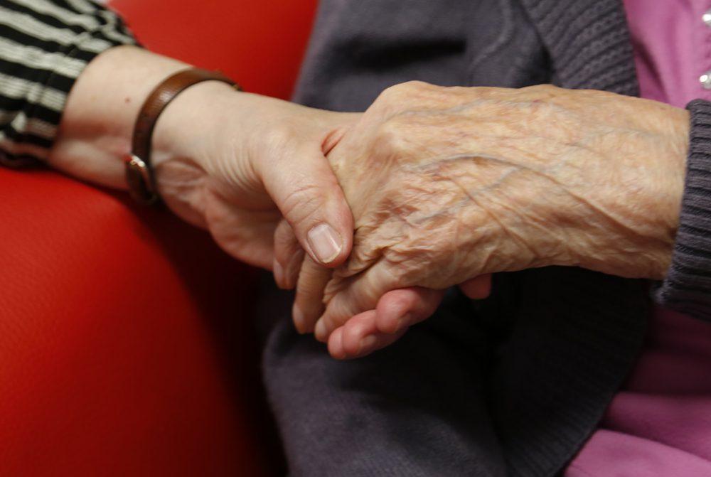 Mindenki szereti Baranya legidősebb lakóját