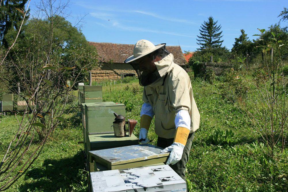 Készül a helyi méz