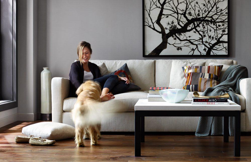 Nyugodtan kereshetünk lakást kutyával is?