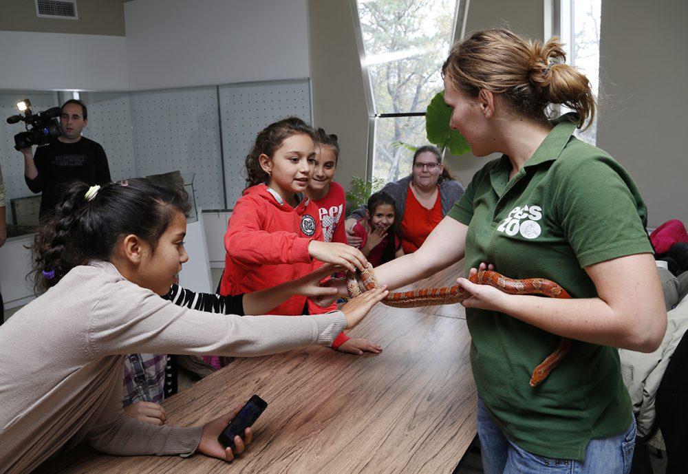 állatkert, gyermekfoglalkozás, hl01