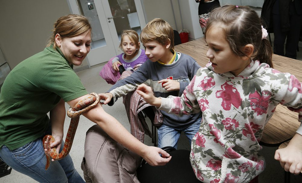 állatkert, gyermekfoglalkozás, hl02