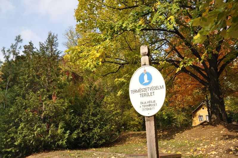 A PTE botanikus kertje is sokat számított a helyezés elérésben