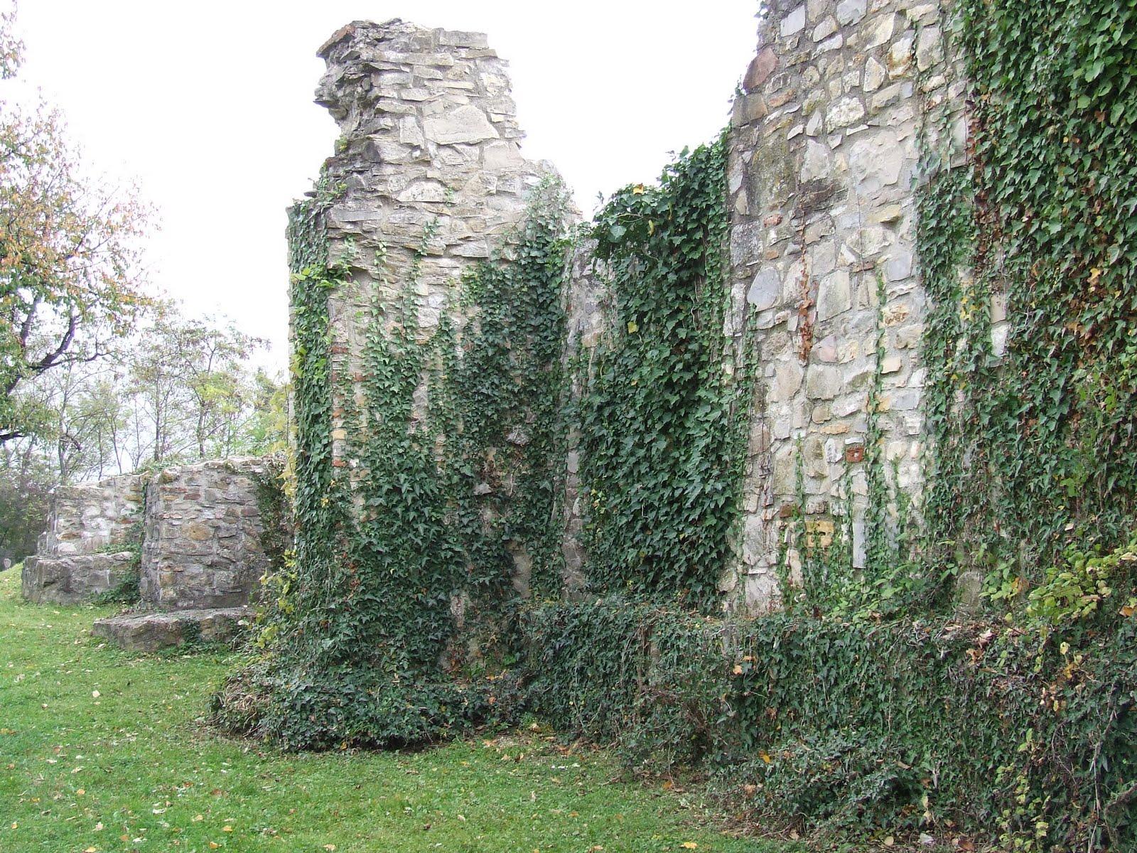 A várfal maradt csak (Forrás: Denevér Várblogger)