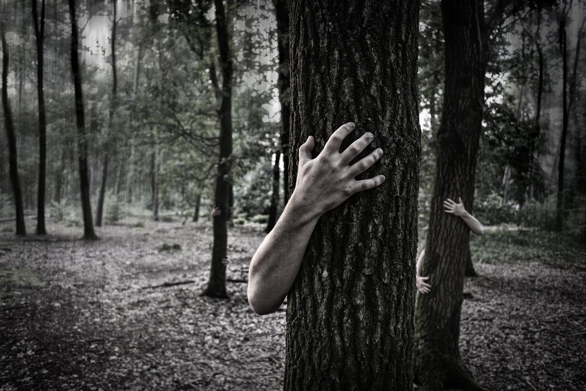 zombi erdő